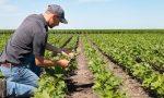 Da Coldiretti nasce il primo B2B agricolo del trevigiano