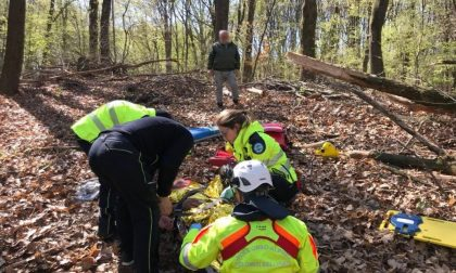 Grave boscaiolo colpito da un tronco nella XI del Montello
