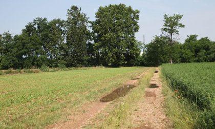 Trevignano inaugura l'Agritour dei Cavedìn