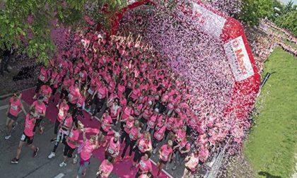 Treviso si colora di rosa