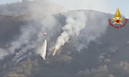Monte Summano, domate le fiamme