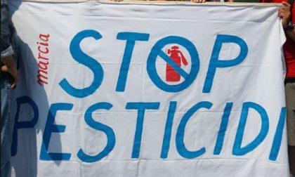 """""""Stop a pesticidi e nuovi vigneti"""""""