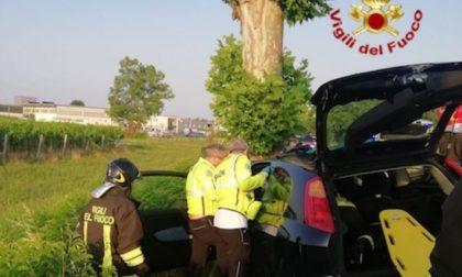 Perde il controllo dell'auto e finisce contro un albero