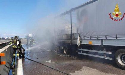 Nell'incidente tra due tir a Bologna muore camionista di Oderzo