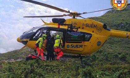 Un 23enne morso da una vipera in Val Visdende