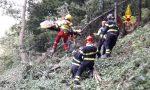 Boscaiolo ferito a Enego: salvato dai vigili del fuoco