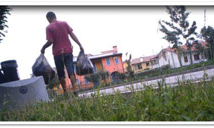 Abbandoni Zero: tutti i numeri del progetto di smaltimento dei rifiuti