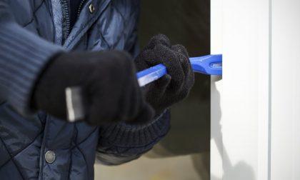 """Raffica di furti a Montebelluna, cresce la paura. Quaggiotto: """"Coinvolgere la vigilanza privata"""""""