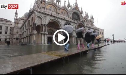 Acqua alta anche oggi a Venezia VIDEO