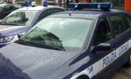 Polizia locale Montebelluna, è allarme per i veicoli senza assicurazione
