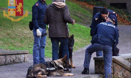 Spaccio Giardini Sant'Andrea Treviso, tre nigeriani controllati: una denuncia