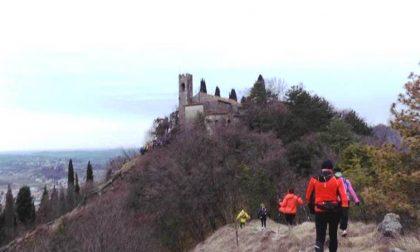 Fiveridges Trail, di corsa (e non solo) tra i colli di Vittorio Veneto