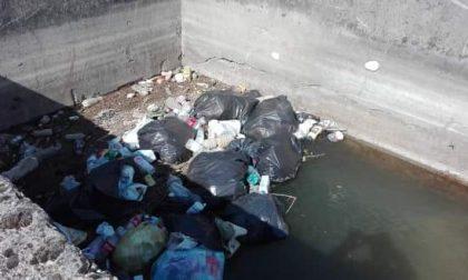 Musano di Trevignano, sacchi neri di rifiuti nel canale: residenti esasperati – FOTO