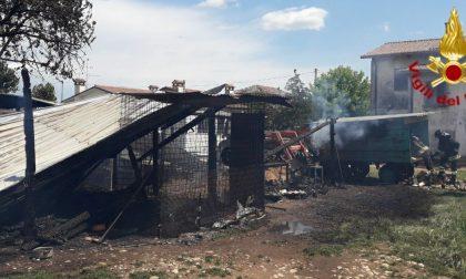 Incendio ricovero animali a Trevignano: proprietaria ustionata nel tentativo di salvare le pecore