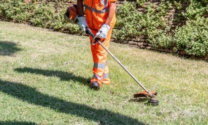 Sfalcio erba Montebelluna: domani parte la manutenzione dei cigli stradali