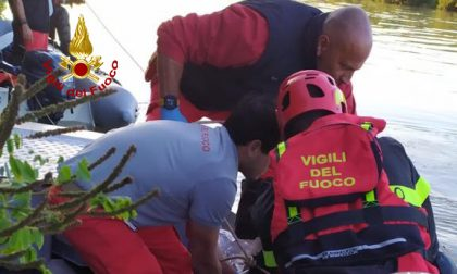 Automobilista nel Brenta, il corpo recuperato ieri sera dai sommozzatori – GALLERY