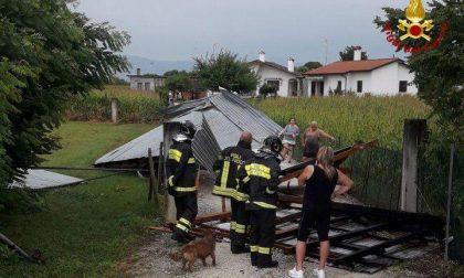 Maltempo sulla Marca: oltre 60 interventi tra alberi caduti, vento e tetti scoperchiati FOTO