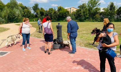 Sgambatura cani a Treviso, inaugurata la nuova area di vicolo San Bartolomeo