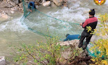 Trovata in acqua una bandana di Celegon: nel torrente due reti di contenimento