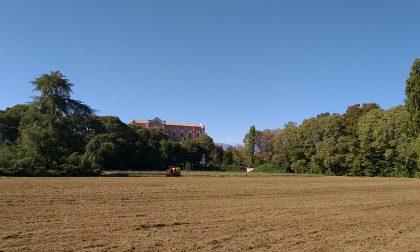 Cooperativa Eos: dona nuova vita al Parco Bertolini di Montebelluna
