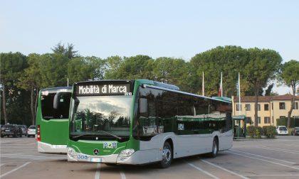 Ibrido leggero, a Treviso debutta il trasporto pubblico sostenibile