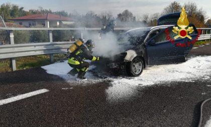 Paura in A27, auto in fiamme: intervengono i Vigili del fuoco
