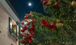 Treviso accende il Natale 2020: alberi monumentali, video e inno ufficiale