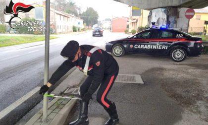 Halloween folle a Castelfranco, piegano cartelli stradali per noia: tre 18enni identificati e denunciati