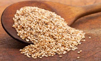 Altro richiamo alimentare: ancora ossido di etilene (cancerogeno) nei semi di sesamo