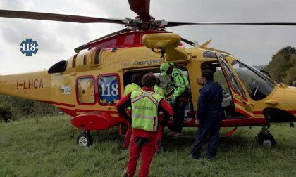 Travolto dalla caduta di un albero: ciclista 69enne finisce all'ospedale