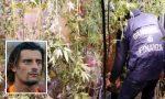 Un (ex) calciatore in erba: il video della maxi coltivazione di marijuana costata l'arresto a Luigi Sartor
