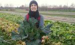 """""""Orto Biologico: Tecniche di coltivazione"""": corso online dal 23 febbraio"""