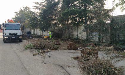 Sterpaglie e rifiuti in via San Vigilio: Comune all'opera