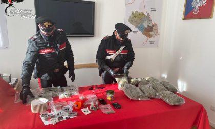 """Il """"bazar"""" della droga era a San Vendemiano: sorpreso con oltre 5 chili di """"maria"""""""