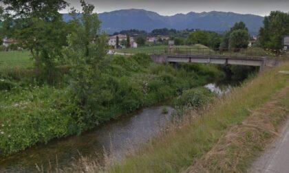 Il torrente Muson e la sua ricca biodiversità. Incontro online su ambiente e territorio