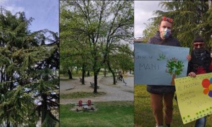 Il parco rischia di diventare un parcheggio, dopo il flash mob scatta la raccolta firme