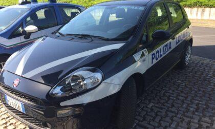 Pontebbana, 84enne al volante senza patente e assicurazione auto: maxi multa