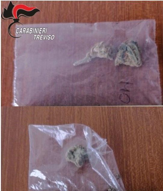 """Altro che """"scheletri"""": nell'armadio della sua cameretta coltivava marijuana"""