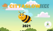 """A tutela delle api e della biodiversità ecco il progetto """"CittàSlowBee"""""""