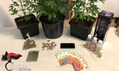 Un arresto ed una denuncia per due giovanissimi trovati in possesso di stupefacente e refurtiva