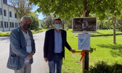 """Esposizione fotografica al Sant'Artemio, il """"Parco si Mostra"""""""