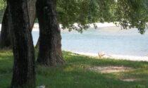 """Il Parco """"ae Barche"""" completamente ripulito e pronto alla riapertura a metà giugno"""