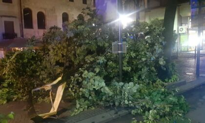 Violento nubifragio nel trevigiano: centinaia gli interventi dei soccorritori