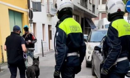 Arrestato pusher nel quartiere San Zeno