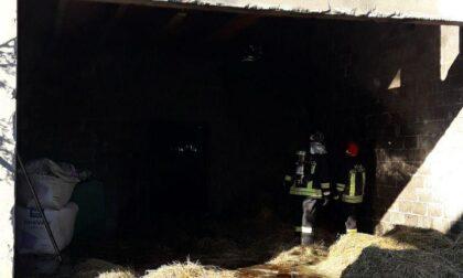 Incendio in una stalla a Loria, ci sono animali feriti